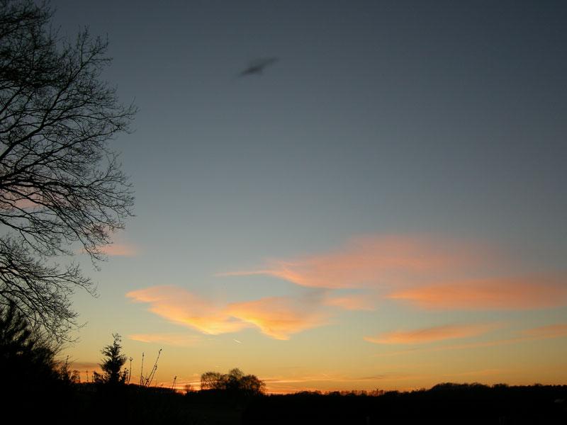 Februarlicht @ 12. Februar 2008