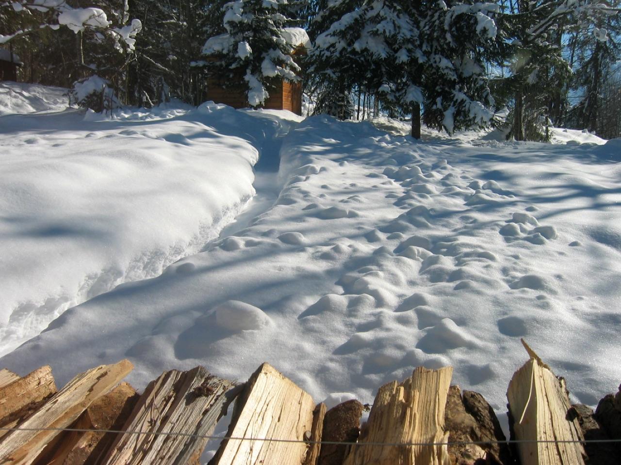 Schneehütte · 1. Februar 2003