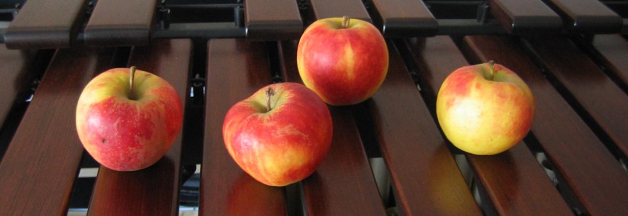 Vier Äpfel auf der Marimba · 27. Januar 2006